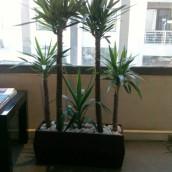 Planta Empresa 12