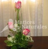 Rosas 3 niveles