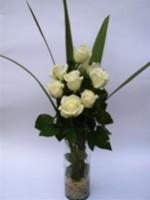 Rosas 02