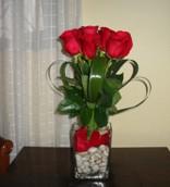 Rosas 03